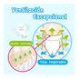 Pañales De Entrenamiento Desechables Merries Talla: XG (12- 22 Kg) 24 uds MERRIES  - babytuto.com